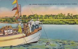 Florida Tarpon Springs Sponge Diver Entering The Water 1942 - Etats-Unis