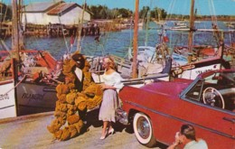 Florida Tarpon Springs Sponge Industry And Sponge Fleet - Etats-Unis