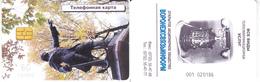 Phonecard   Russia. Voronez  60 Units R - Russie