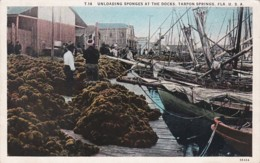 Florida Tarpon Springs Unloading Sponges At The Docks Curteich - Etats-Unis