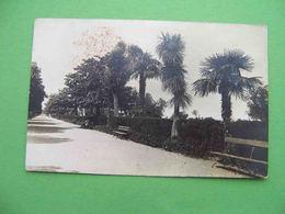 BATUM Batumi 1920s Primorsky Boulevard. Russian Photo Postcard - Géorgie