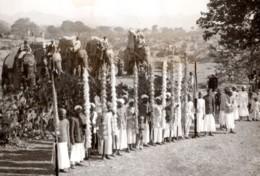 Inde Udaipur Visite Du Prince De Galles Reception Elephants Ancienne Photo De Presse 1920's - War, Military