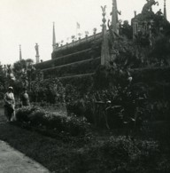Italie Lac Majeur Isola Bella Jardins Ancienne Photo Stereo Possemiers 1900 - Stereoscopic