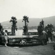Italie Lac Majeur Isola Bella Stresa Ancienne Photo Stereo Possemiers 1900 - Photos Stéréoscopiques