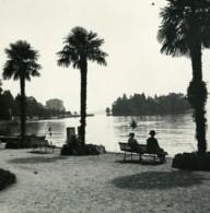 Italie Lac Majeur Pallanza Jardin Public Ancienne Photo Stereo Possemiers 1900 - Stereoscopic