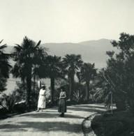 Italie Lac Majeur Pallanza Eden Hotel Jardins Ancienne Photo Stereo Possemiers 1900 - Photos Stéréoscopiques