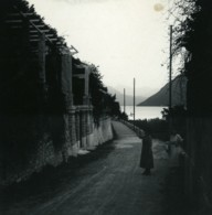 Suisse Lac De Lugano Castagnola Pergola Ancienne Photo Stereo Possemiers 1900 - Stereoscopic