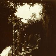 Suisse Lac De Lugano Gandria Un Sentier Ancienne Photo Stereo Possemiers 1900 - Stereoscopic
