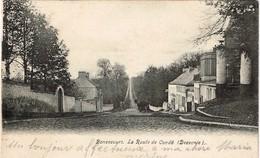 CPA - Pérulwez -Bonsecours - La Route De Condé - Péruwelz