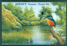 Jersey 2001 Pond Life, Birds, Kingfisher Opt Belgica 2001 MS MUH - Jersey