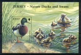 Jersey 2004 Waterbirds MS MUH - Jersey