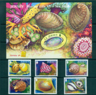 Jersey 2006 Shells+ Belgica MS MUH Lot66495 - Jersey