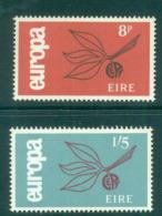 Ireland 1965 Europa MUH Lot54560 - 1949-... Republic Of Ireland