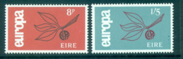 Ireland 1965 Europa, Leaves & Fruit MUH Lot65394 - Used Stamps