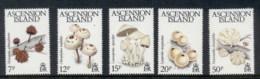 Ascension Is 1983 Funghi Mushrooms MUH - Ascension (Ile De L')