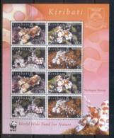 Kiribati 2005 WWF Harlequin Shrimp MS MUH - Kiribati (1979-...)
