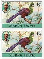 SIERRA LEONE 1980 Turaco Birds 1c Impr.1981 Wmk CA IMPERF.PAIR - Coucous, Touracos