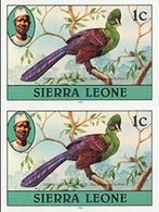 SIERRA LEONE 1980 Birds Turaco 1c Imp.1983 No Wmk IMPERF.PAIR - Coucous, Touracos