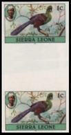 SIERRA LEONE 1980 Birds Turaco 1c Imp.1983 No Wmk IMPERF.GUTTER PAIR - Coucous, Touracos