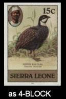 SIERRA LEONE 1980 Local Birds Green Blue Quail 15c Imp.1983 IMPERF.4-BLOCK - Oies