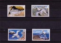 2009 Ascension Birds Full Set MNH - Ascension (Ile De L')