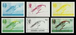 SIERRA LEONE 1980 Birds Didric Cuckoo 7c Imp.1982 PROGRESSIVE PROOFS:6 - Coucous, Touracos