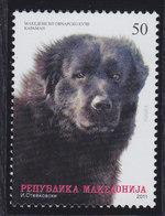 Macedonia 2011 Pets - Dog, MNH (**) Michel 585 - Mazedonien