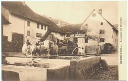HEMMENTHAL Schaffhausen Dorfplatz Mit Brunnen Bauer Mit Kühen - SH Schaffhouse
