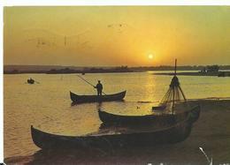 Roumanie Le Delta Du Danube Crepuscule Barque Animée - Roumanie