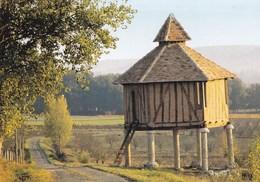En Parcourant Nos Campagnes - Pigeonnier (Lauzerte) - Lauzerte