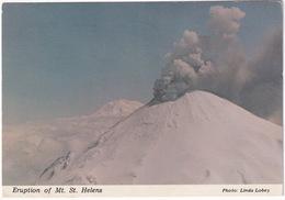 Eruption Of Mt. St. Helens - March 27, 1980  - Washington  - (USA) - Verenigde Staten