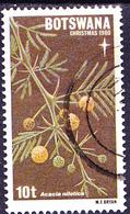 Botswana - Ägyptischer Schotendorn (Acacia Nilotica) (Mi.Nr.: 259) 1980 - Gest Used Obl - Botswana (1966-...)