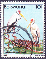 Botswana - Nimmersatt (Mycteria Ibis) (Mi.Nr.: 307) 1982 - Gest Used Obl - Botswana (1966-...)