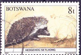 Botswana - Afrikanischer Igel (Erinaceus Frontalis) (Mi.Nr.: 409) 1987 - Gest Used Obl - Botswana (1966-...)
