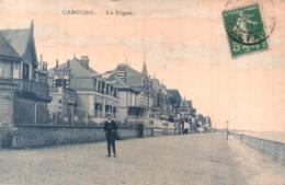 14 CABOURG LA DIGUE - Cabourg