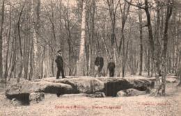 RARE  77 FORET DE CARUELLE PIERRE TURQUOISE ANIMEE CIRCULEE - Fontainebleau