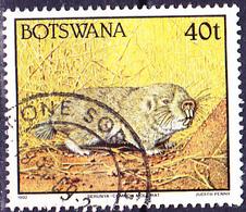 Botswana - Afrikanischer Graumull (Cryptomys Hottentotus) (Mi.Nr.: 527) 1992 - Gest Used Obl - Botswana (1966-...)