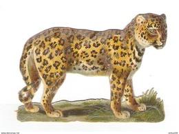 CHROMO DÉCOUPIS GAUFRÉ GUÉPARD - GUEPARDO - GEPARD - GHEPARDO - Animals