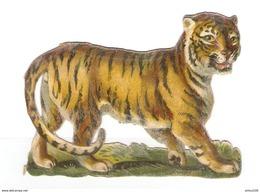 CHROMO DÉCOUPIS GAUFRÉ TIGRE - TIGER - - Animals