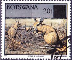 Botswana - Springhase (Pedetes Capensis) (Mi.Nr.: 594) 1996 - Gest Used Obl - Botswana (1966-...)