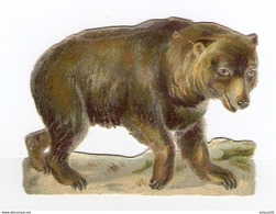 CHROMO DÉCOUPIS GAUFRÉ OURS NOUNOURS - BEAR - TRAGEN - ORSO - SOPORTAR - Animals