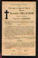 Souvenir Mortuaire DELVIGNE Rosalie (1809-1898) Vve VANDROME, N. Morte à MOUSTIER-SUR-SAMBRE - Imágenes Religiosas