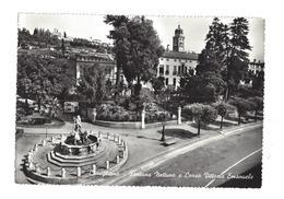 CARTOLINA DI CONEGLIANO - TREVISO  - 2 - Treviso