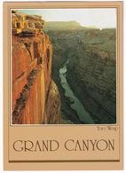 Toro Weap - Grand Canyon - Arizona - (USA) - USA Nationale Parken