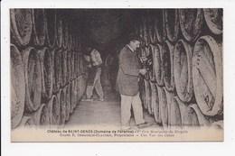 CPA 33 Chateau De SAINT GENES (domaine De Perenne) 1er Cru Bourgeois Du Blayais Une Vue Des Caves - Bordeaux