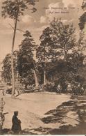 Unser Siegeszug... Auf Dem Marsch, Feldpost 1916 N. Oberstein - Alte Sw Karte - Guerre 1914-18