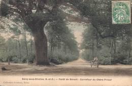 91 SOISY SOUS ETIOLLES Forêt De Sénart Carrefour Du Chêne Prieur - France