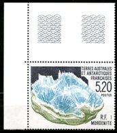 T.A.A.F.   Y&T   160  XX   ---     MNH  --  Luxe  --  Superbe Coin De Feuille... - Neufs