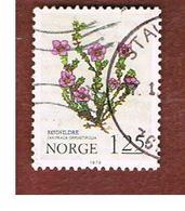 NORVEGIA  (NORWAY)    SG 853  -   1979   CHRISTMAS:  PLANTS (SAXIFRAGA)  -   USED ° - Norvegia