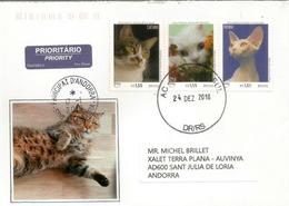 Animais De Estimação. Affectionate Cats. , Lettre Du Brésil. UPAEP 2018, Adressée Andorra, Avec Timbre à Date Arrivée - Domestic Cats